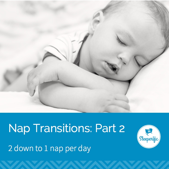 Nap Transitions: Part 2